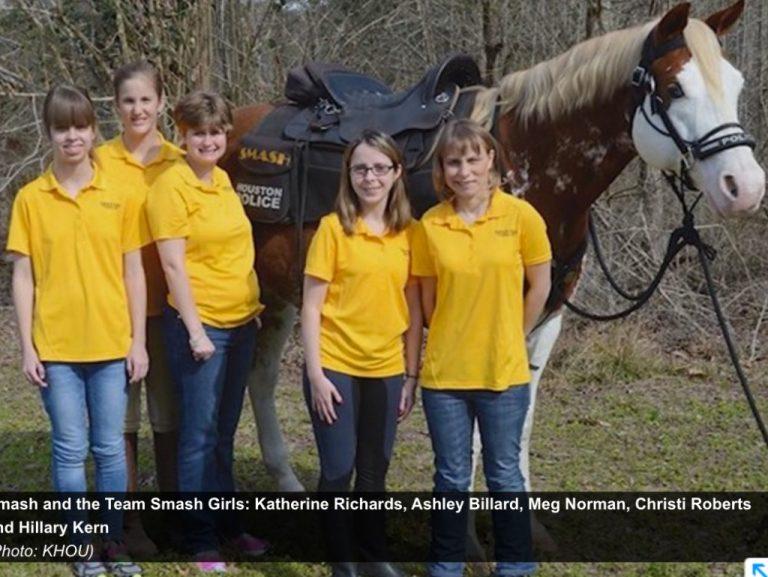 知的障害の女性たちを夢中にさせた馬
