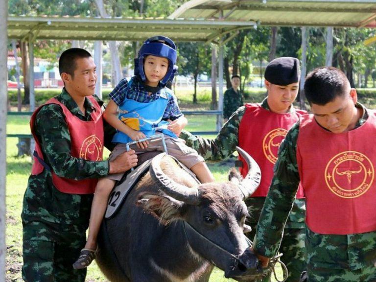 タイ陸軍が始めた発達障害児への牛セラピー