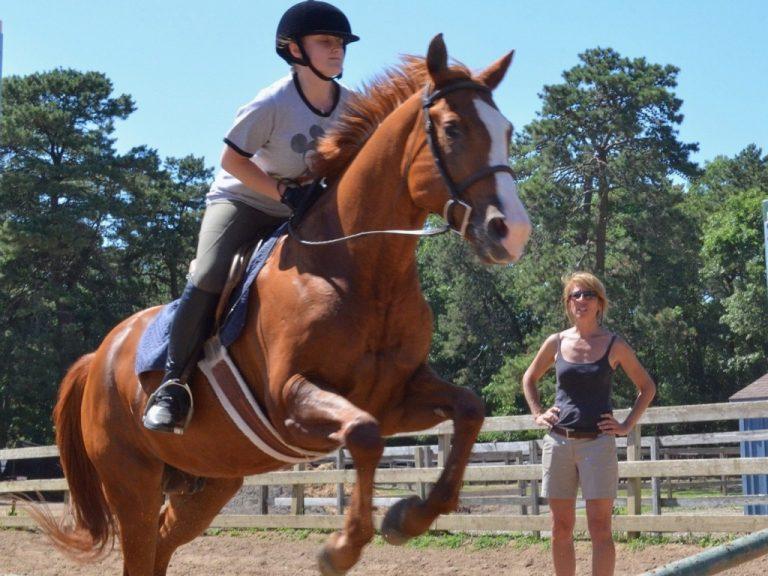 馬は人間の障害を気にしない。乗馬セラピー