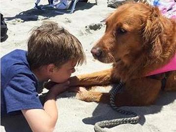 犬と一緒のサーフィンで発達障害の子が成長 s12