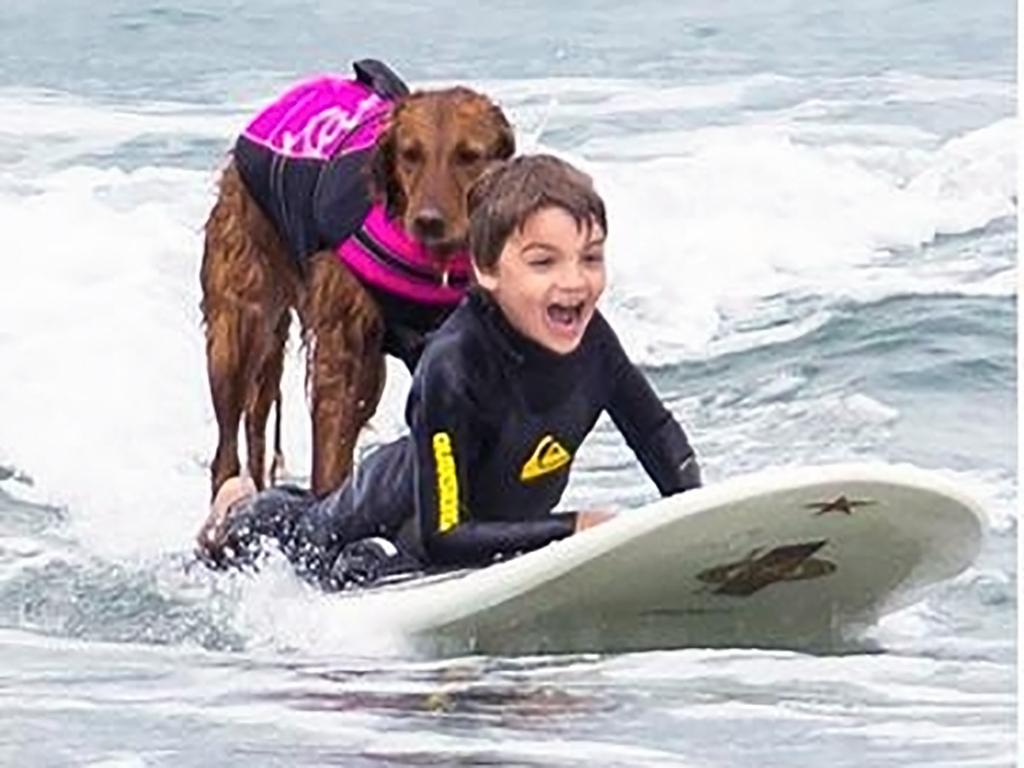 犬と一緒のサーフィンで発達障害の子が成長