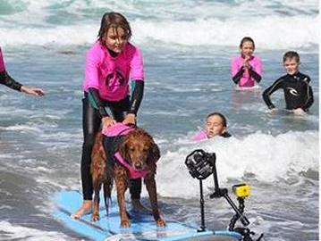 犬と一緒のサーフィンで発達障害の子が成長 s3