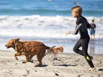 犬と一緒のサーフィンで発達障害の子が成長 s4