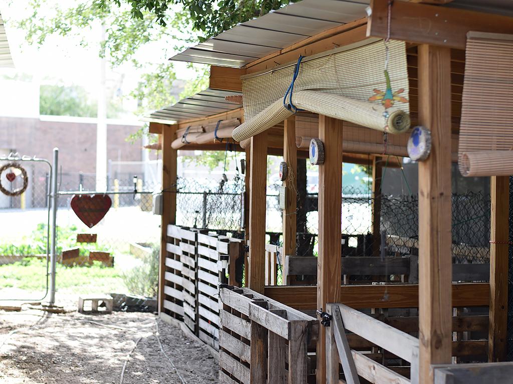 発達障害の生徒たち向けの農園を設けた学校 g2