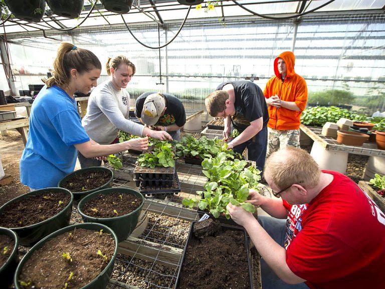 発達障害の人たちは農園で働いて野菜だけでなく自分たちも育てる
