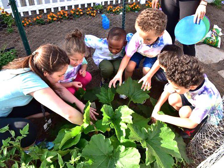 小さなお庭で発達障害の子がみんなで学ぶ。