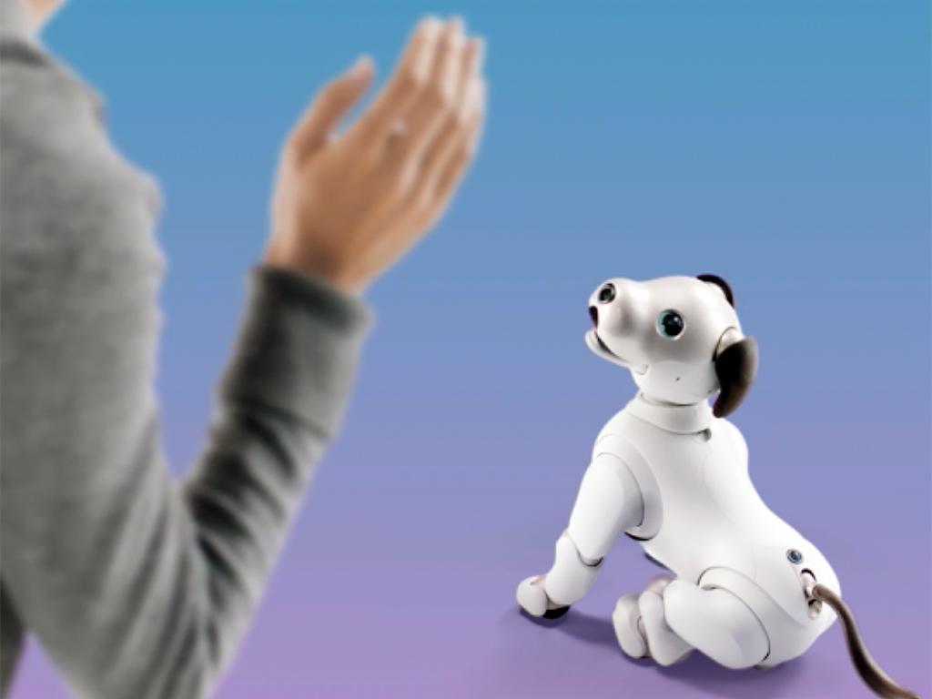 ロボットペットは発達障害の人も助け、大きく活躍をし始めている a1