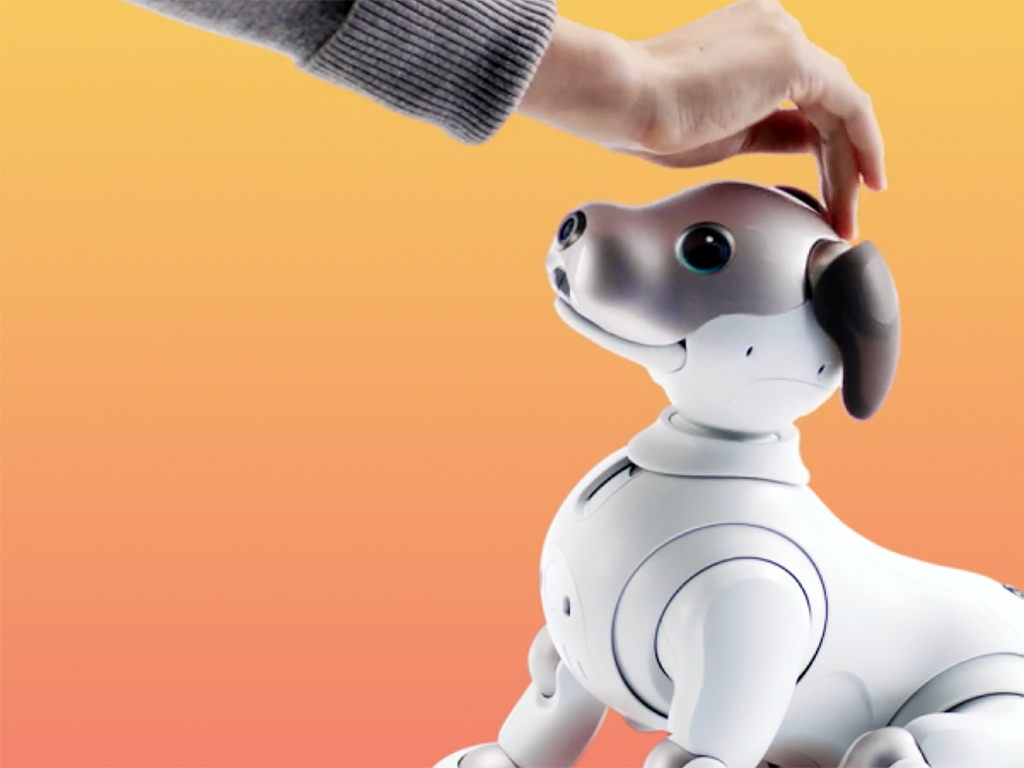 ロボットペットは発達障害の人も助け、大きく活躍をし始めている a2