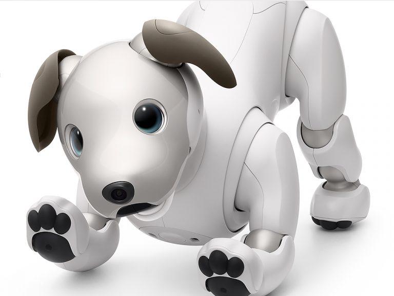 ロボットペットは発達障害の人も助け、大きく活躍をし始めている