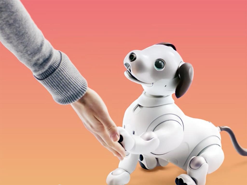 ロボットペットは発達障害の人も助け、大きく活躍をし始めている a7