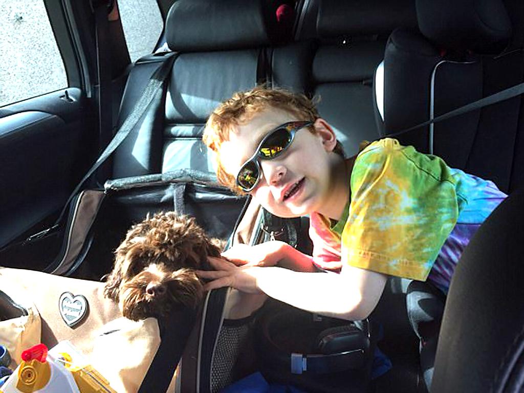 発達障害の息子を変えてくれたかわいい子犬 d2