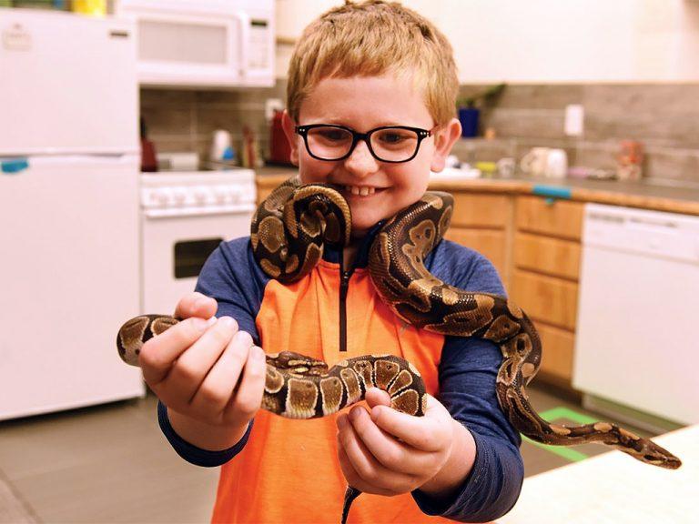 ヘビが発達障害の子を落ち着かせ友だちにもなり、療育を助ける