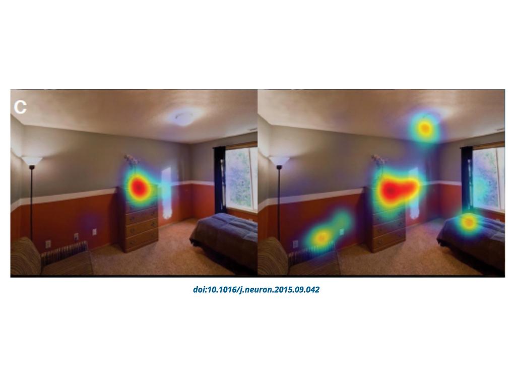 目の動きの調査結果、発達障害の人が見ないのは顔や目だけでない c2-2