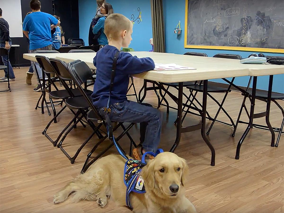 発達障害の子と家族を助けてくれる介助犬 d2