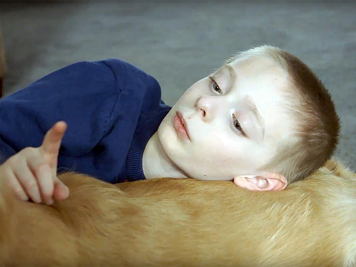 発達障害の子と家族を助けてくれる介助犬 d4-1