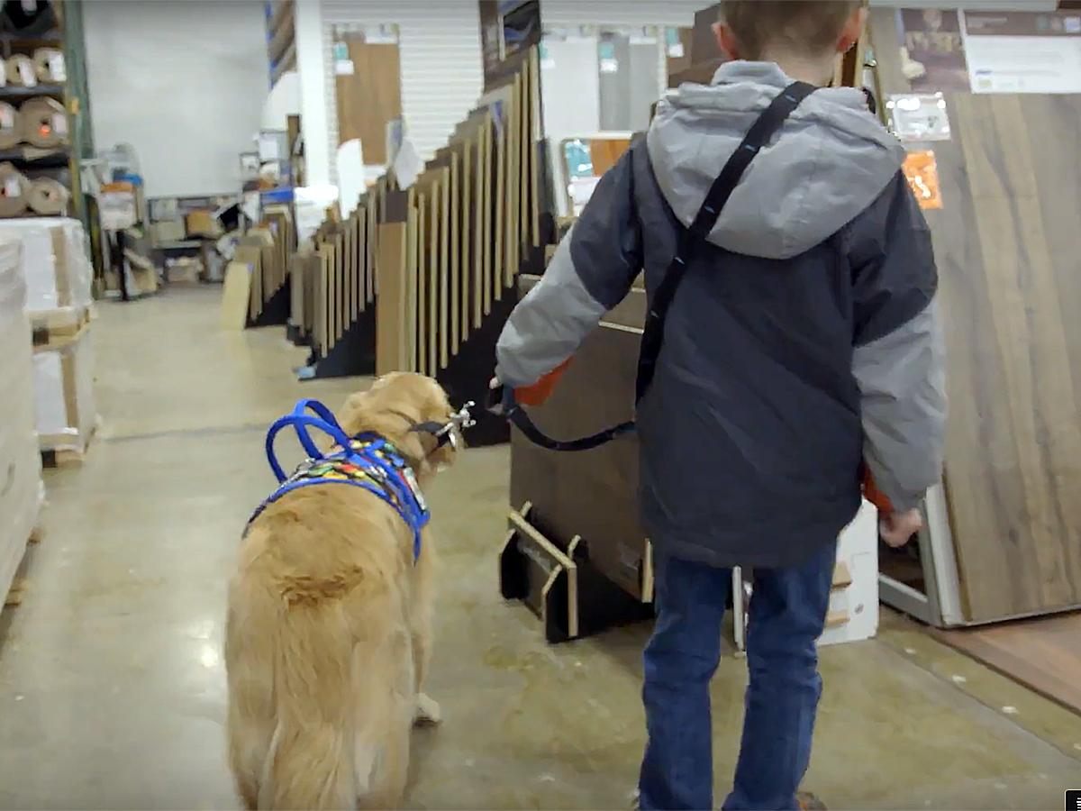 発達障害の子と家族を助けてくれる介助犬 d5-1