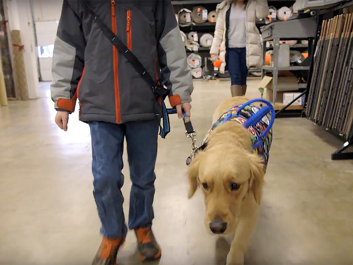 発達障害の子と家族を助けてくれる介助犬 d7-1