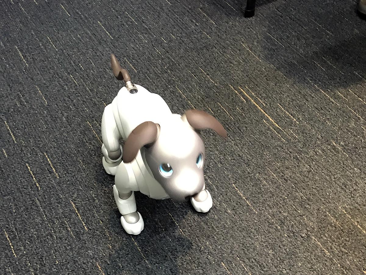 自閉症など発達障害の子を助けるロボットのNAOに会いました aibo