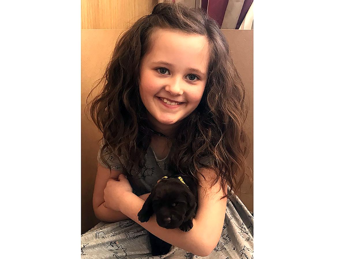 子どもが発達障害でつらいときに助けてくれるラブラドールの子犬 d2