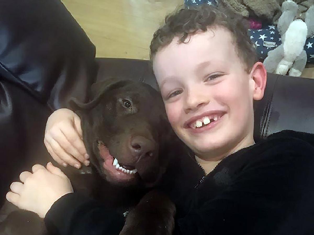 子どもが発達障害でつらいときに助けてくれるラブラドールの子犬 d3