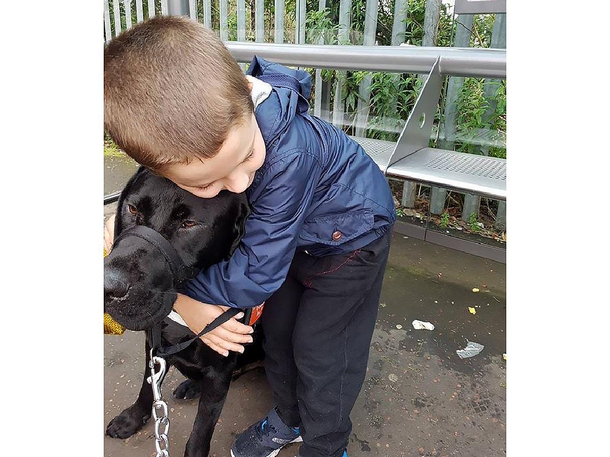 子どもが発達障害でつらいときに助けてくれるラブラドールの子犬 d4