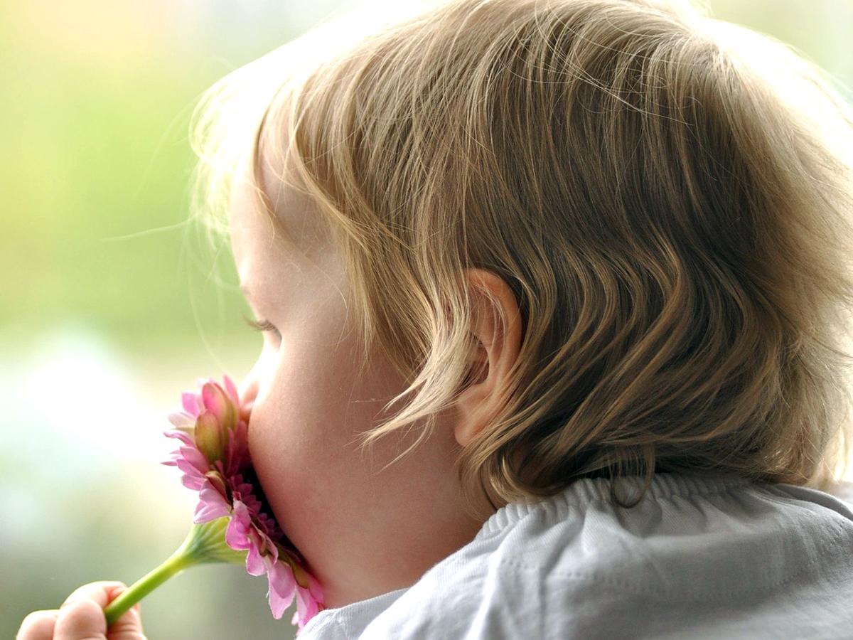 発達障害の人はたくさんの脳の領域を使って、匂いを嗅いでいる s2