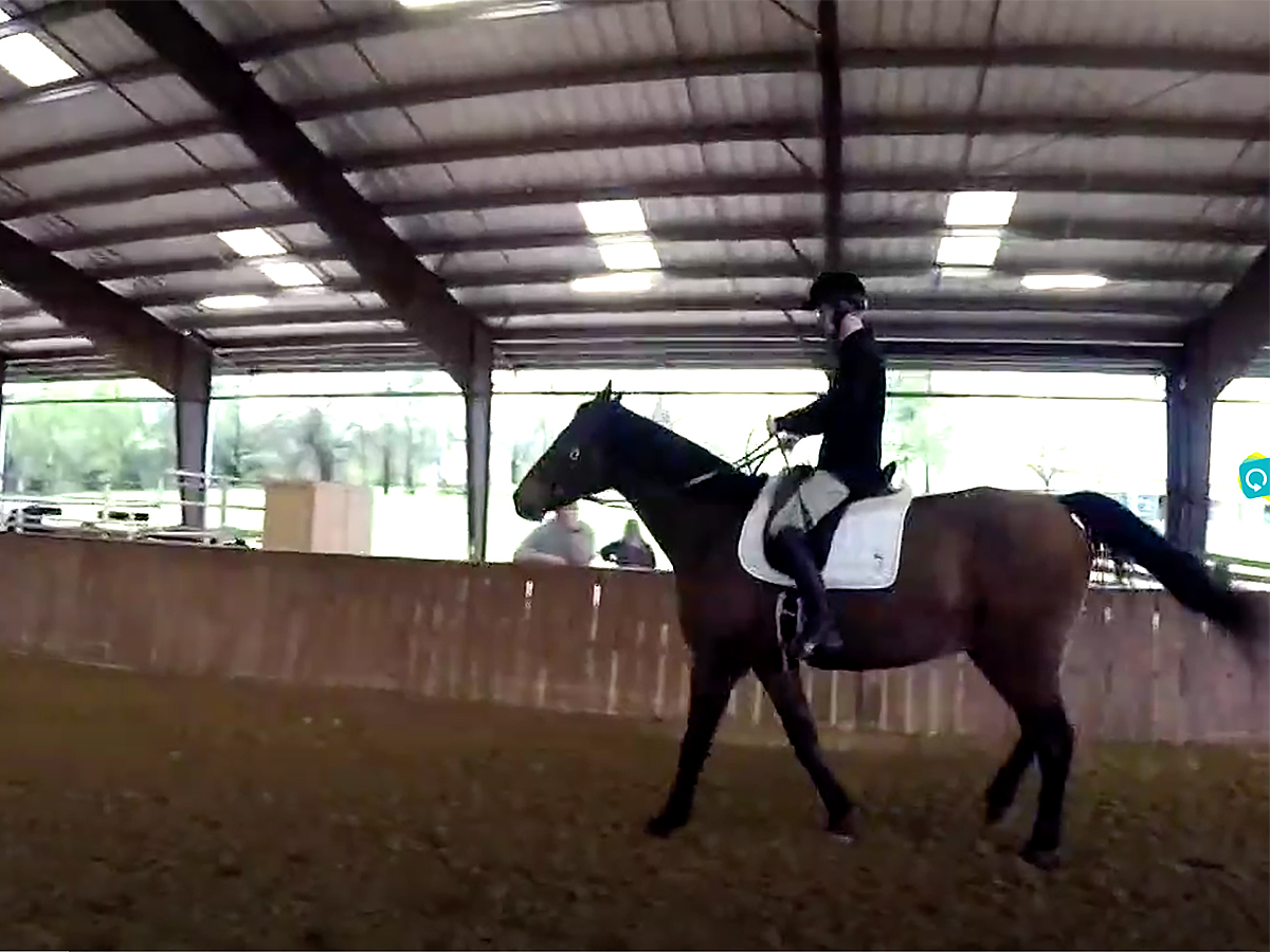 発達障害の青年は馬の療育でコミュニケーションを学び自信もつく u10