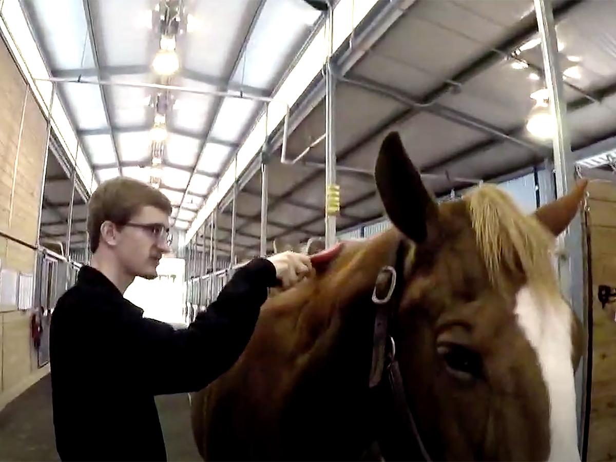 発達障害の青年は馬の療育でコミュニケーションを学び自信もつく u5