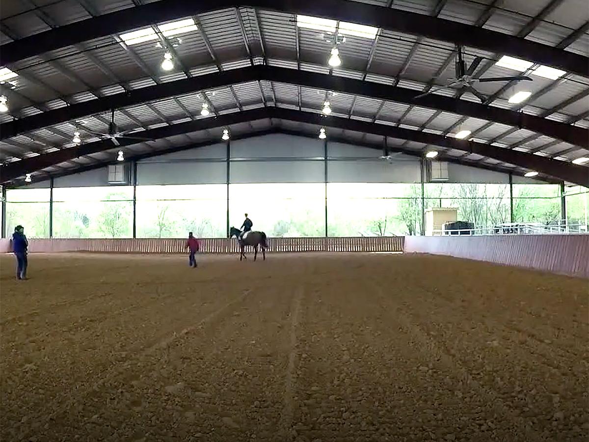 発達障害の青年は馬の療育でコミュニケーションを学び自信もつく u6