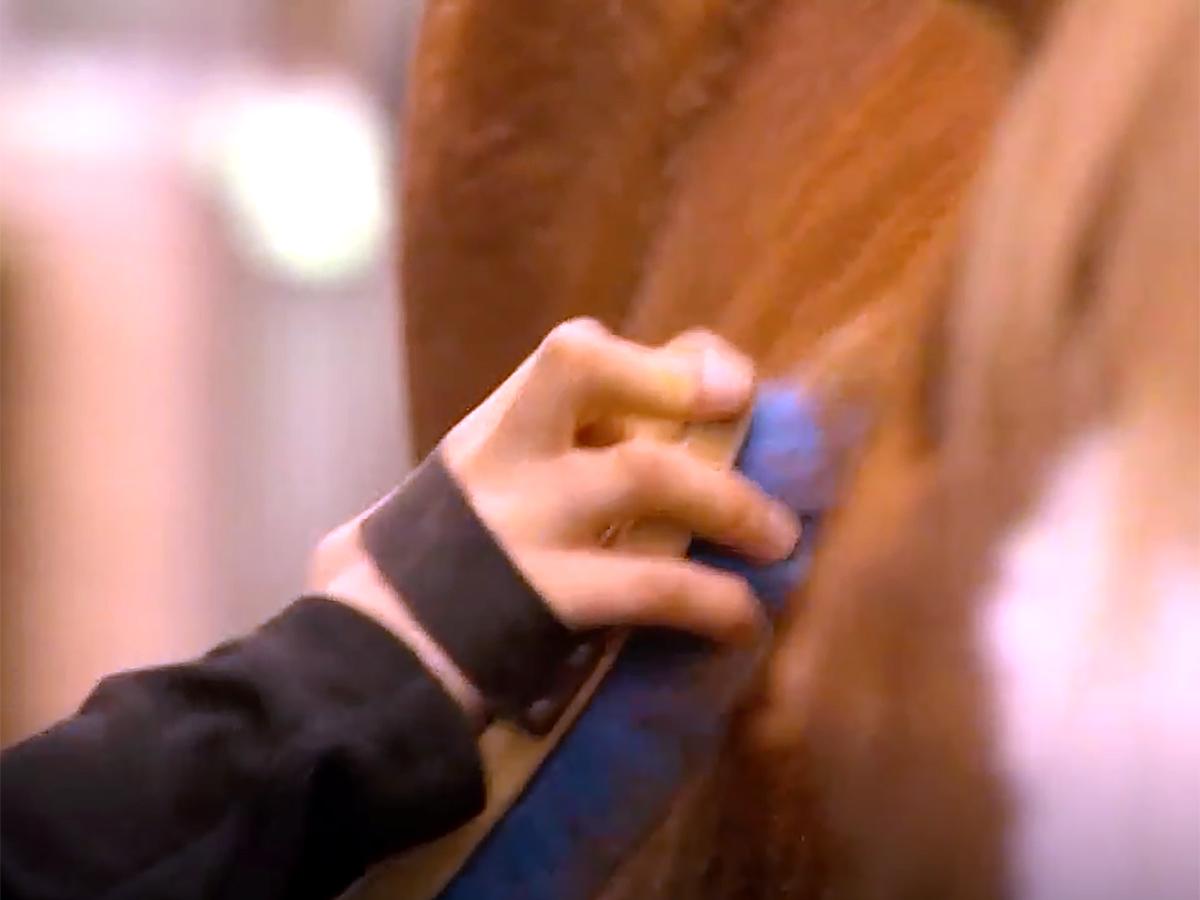 発達障害の青年は馬の療育でコミュニケーションを学び自信もつく u7