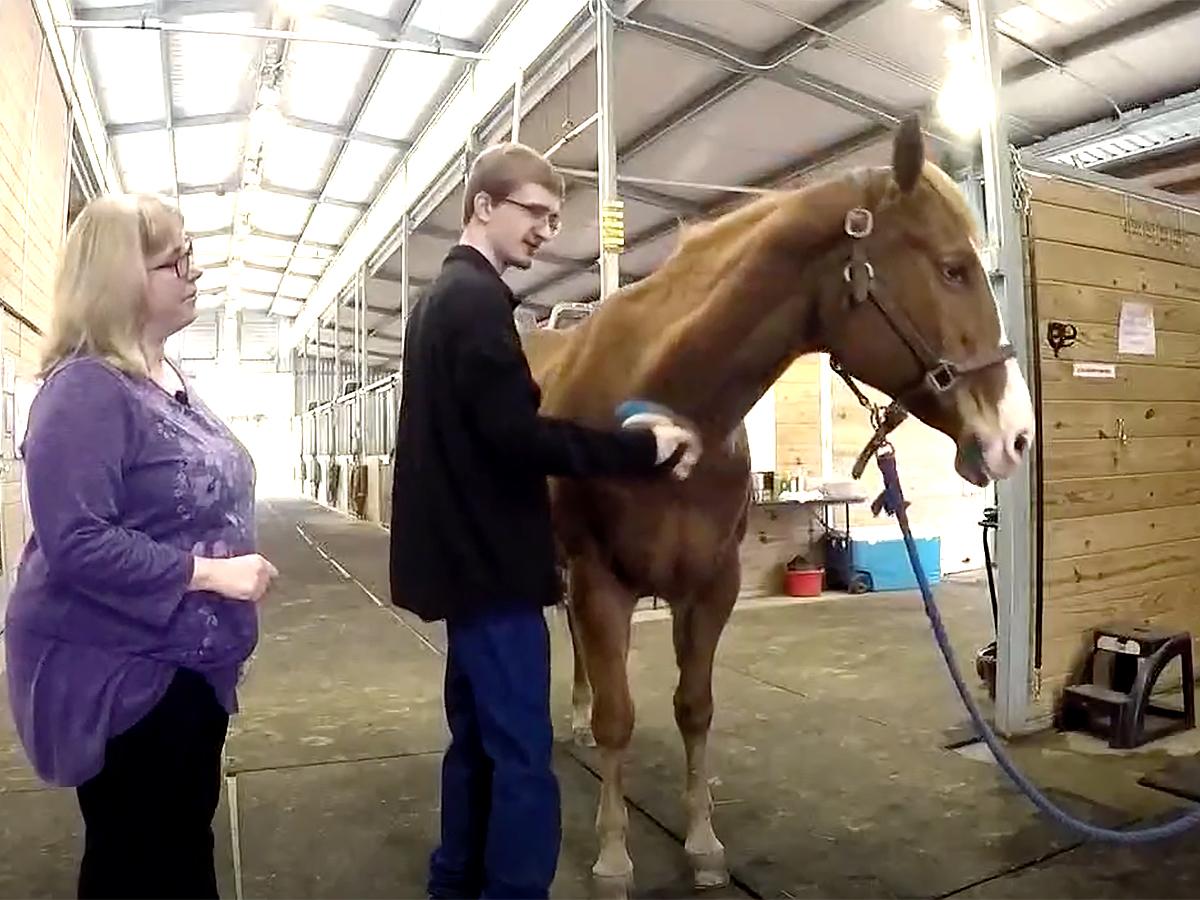 発達障害の青年は馬の療育でコミュニケーションを学び自信もつく u9