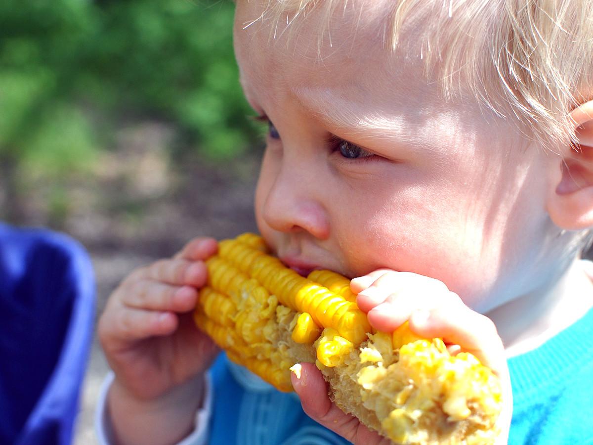 発達障害の子はそうでない子より食物アレルギーの可能性が2倍?