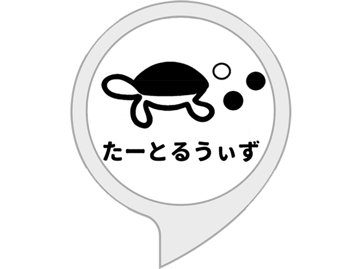視覚、聴覚、知的障害などの方を助けるGoogleのAI技術 turtlewiz_logo_alexa_title