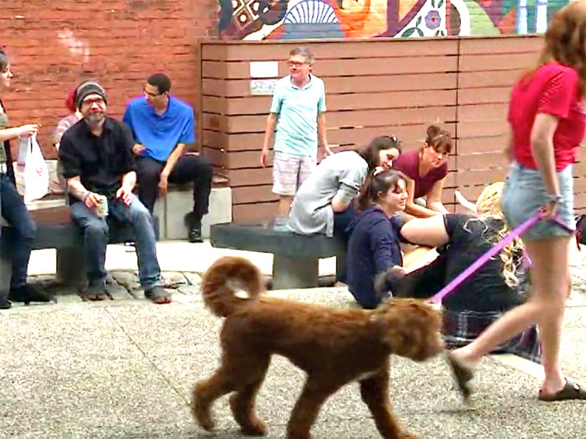発達障害の子の親たちが始めた犬と人と交流することができる機会