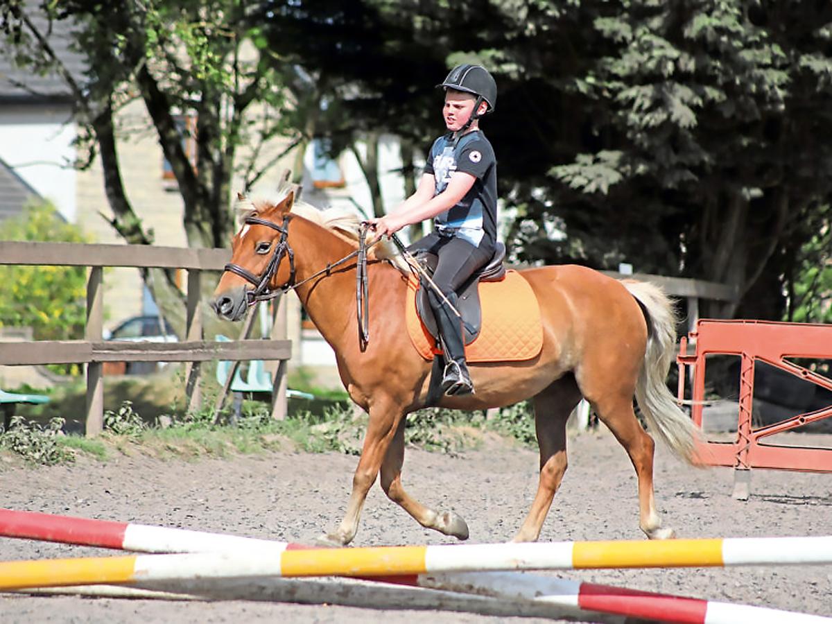 発達障害の子は乗馬をするようになってから自分に自信がついた u1