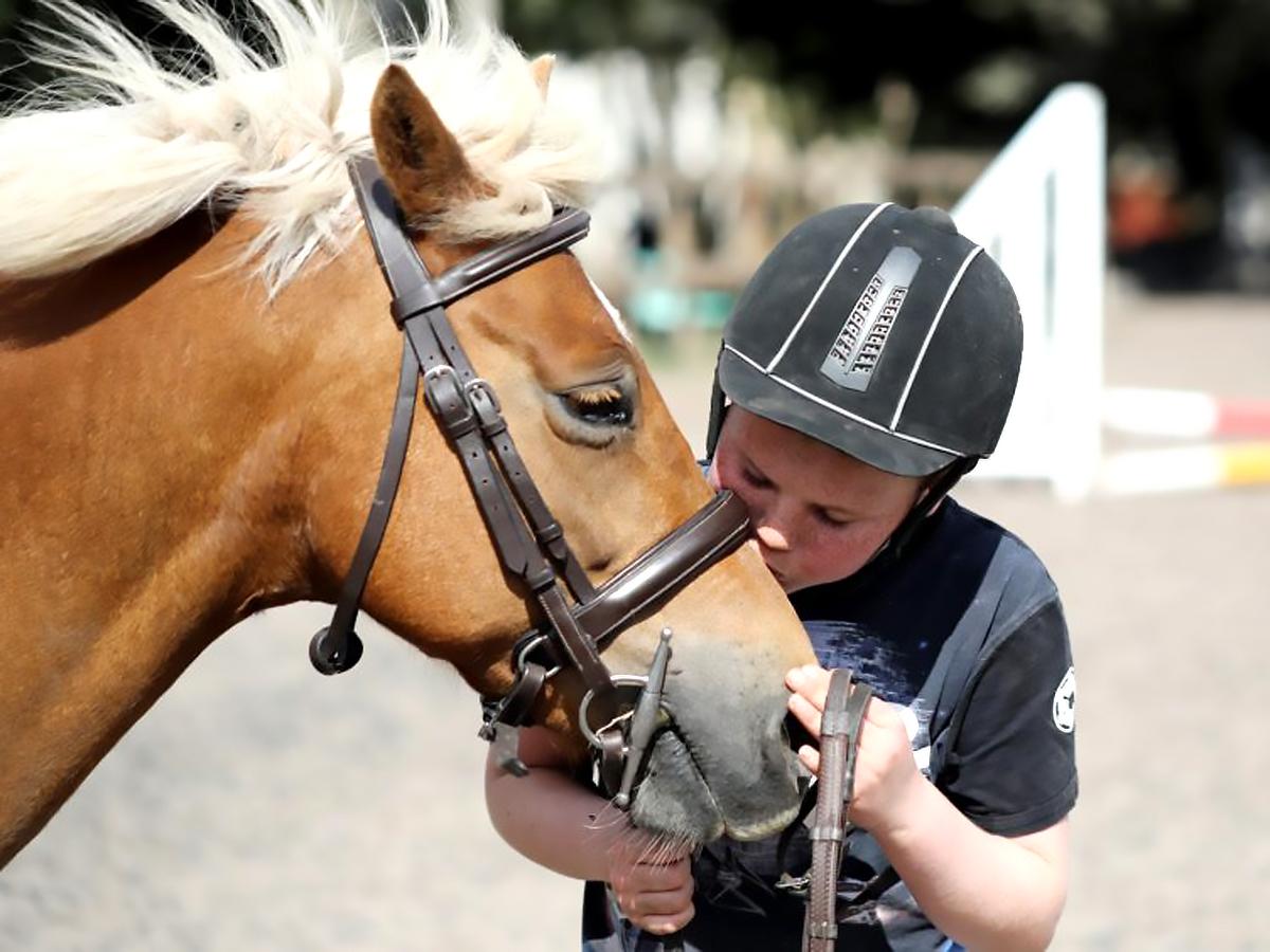 発達障害の子は乗馬をするようになってから自分に自信がついた