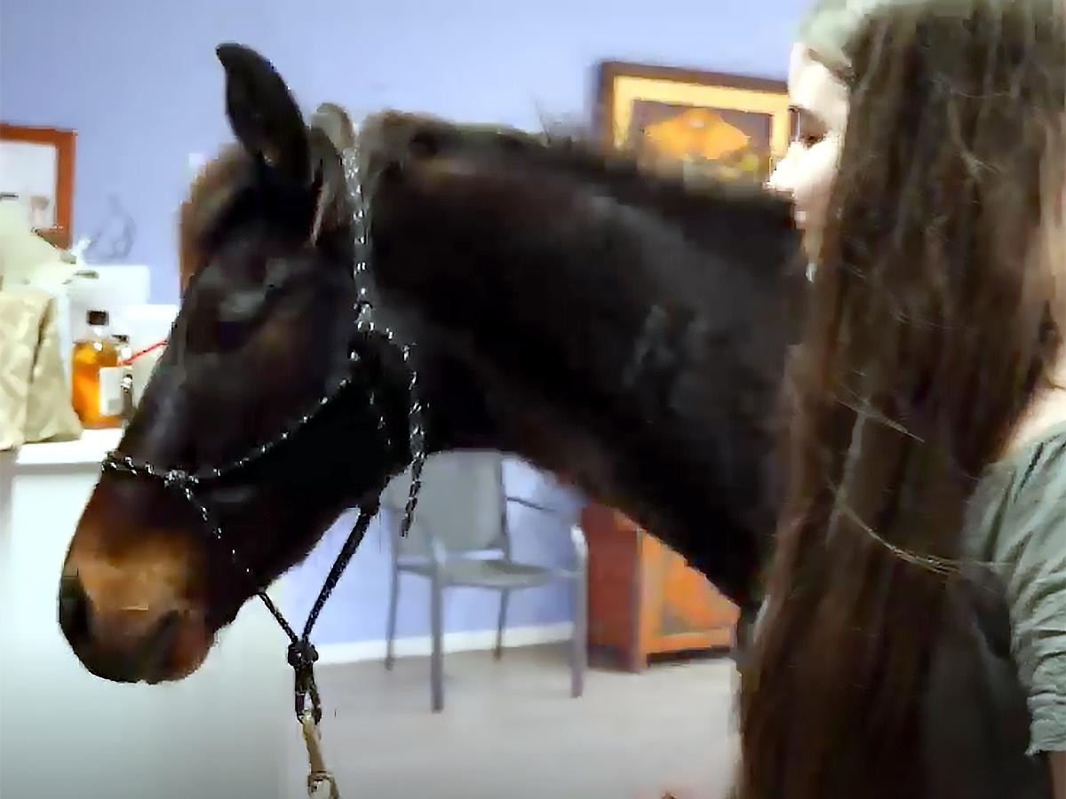 発達障害の娘が馬と過ごすようになってから本当の姿が見えた。 u5-1