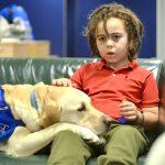 発達障害で車椅子の生活だった少年と家族の人生を変えてくれた犬