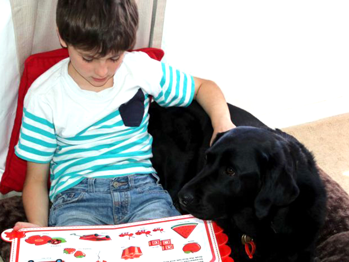 発達障害の人を助ける介助犬。特に重要なのは人の安全を守ること
