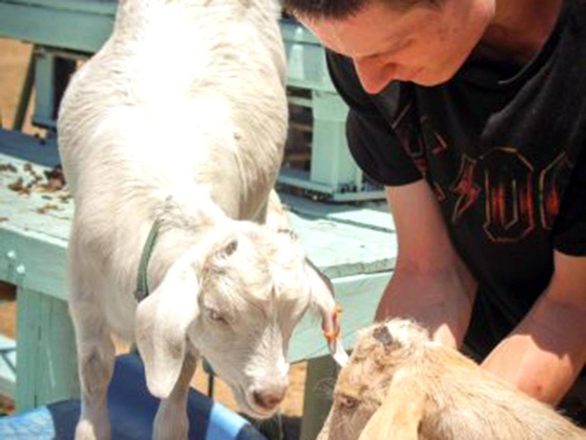 発達障害の子たちが落ち着き自由になれる小さな動物がいる農場 f5
