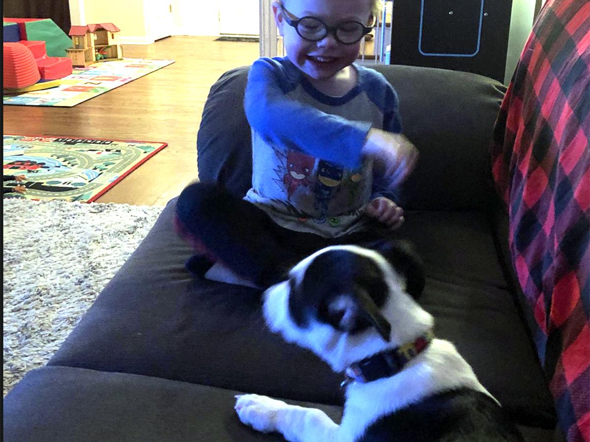 発達障害の息子とすっかり友だちになった介助犬。うれしい光景 i3
