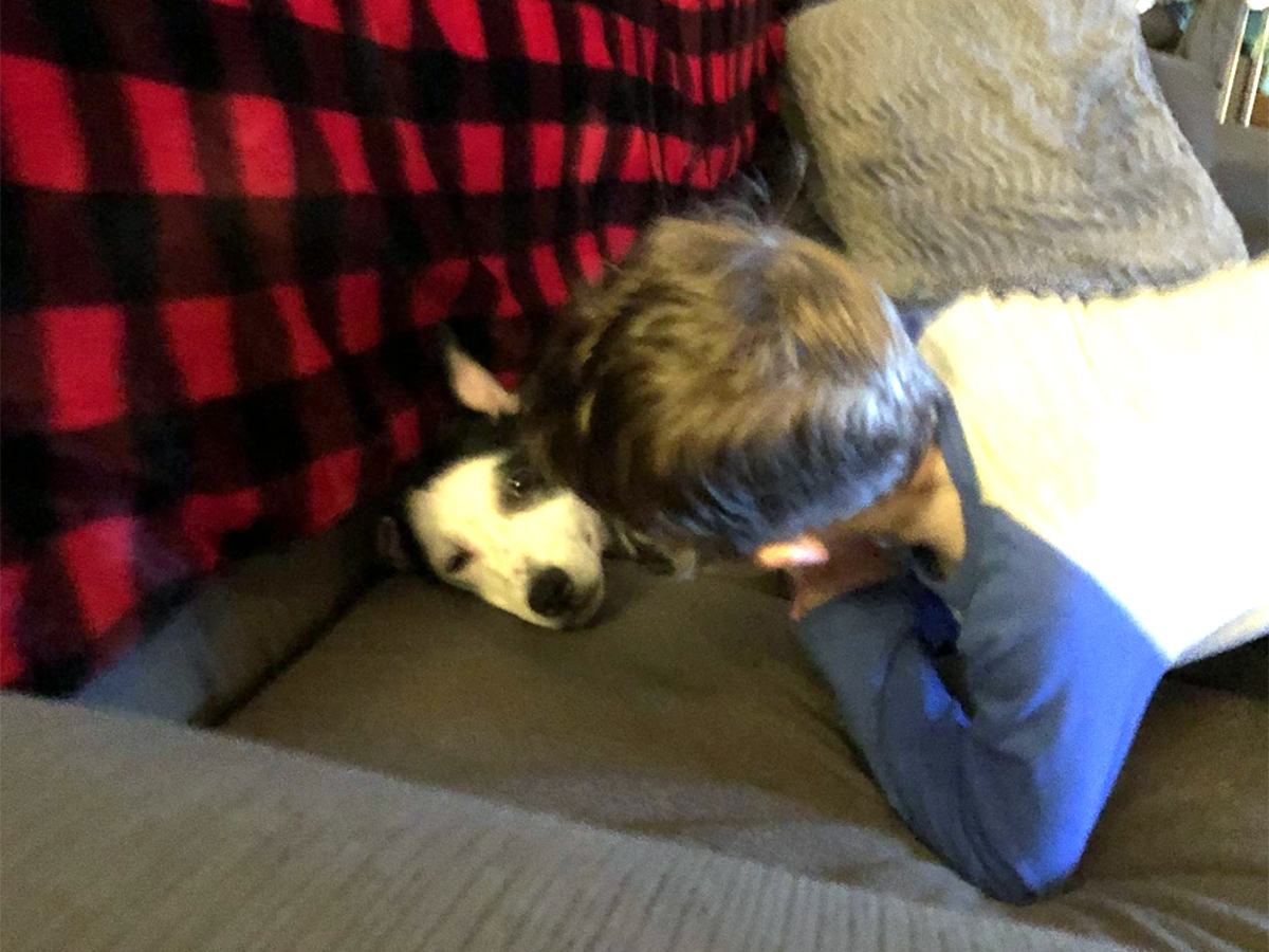 発達障害の息子とすっかり友だちになった介助犬。うれしい光景 i4