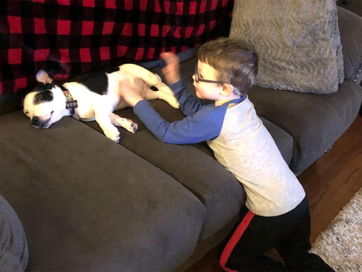 発達障害の息子とすっかり友だちになった介助犬。うれしい光景 i6