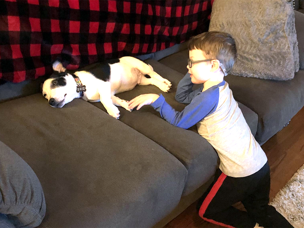 発達障害の息子とすっかり友だちになった介助犬。うれしい光景