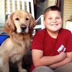発達障害の自閉症の子どものために特別に訓練をされた介助犬