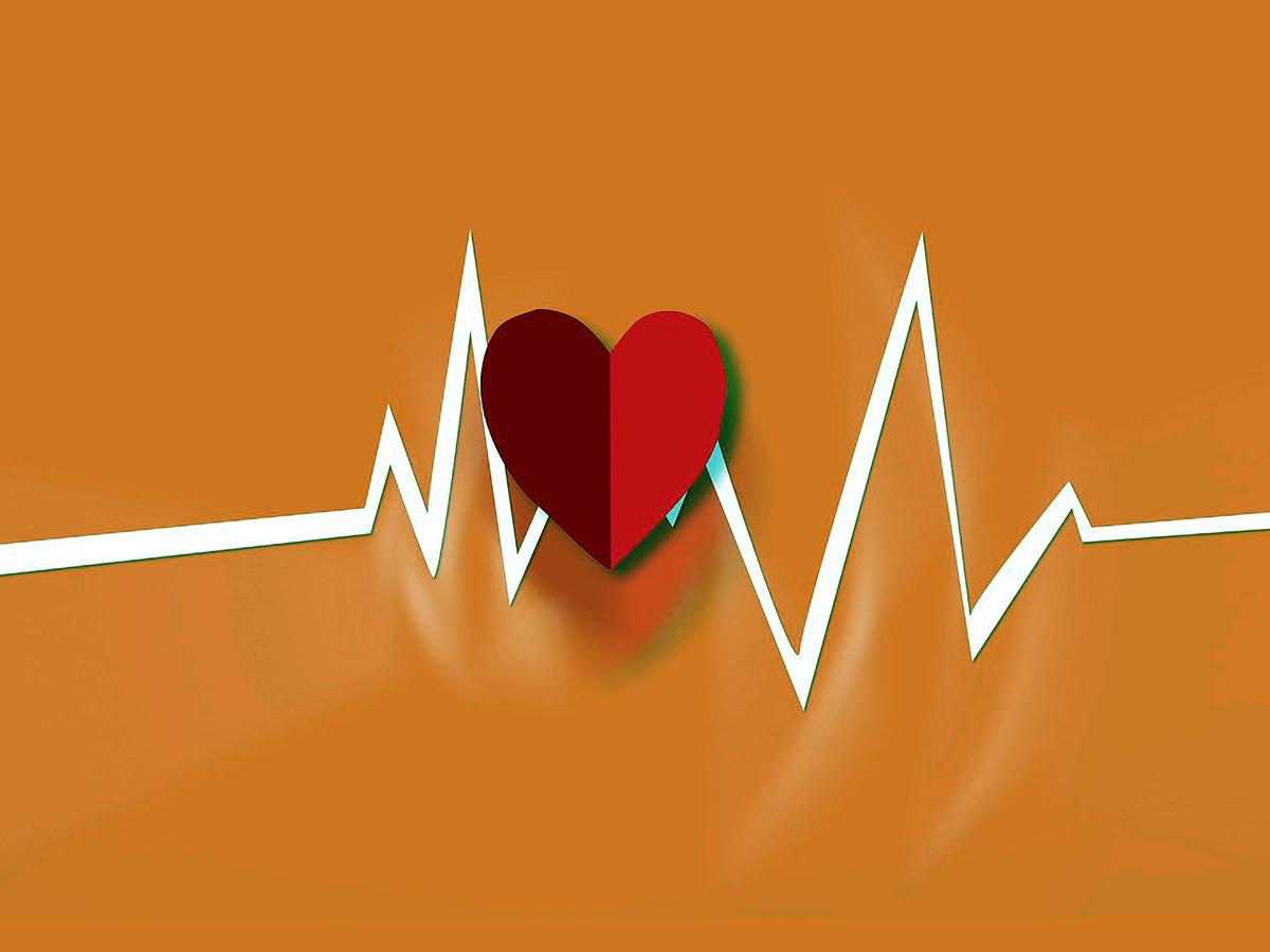 自閉症の人は心拍数は多く、そして変化が少ないという研究結果 h4