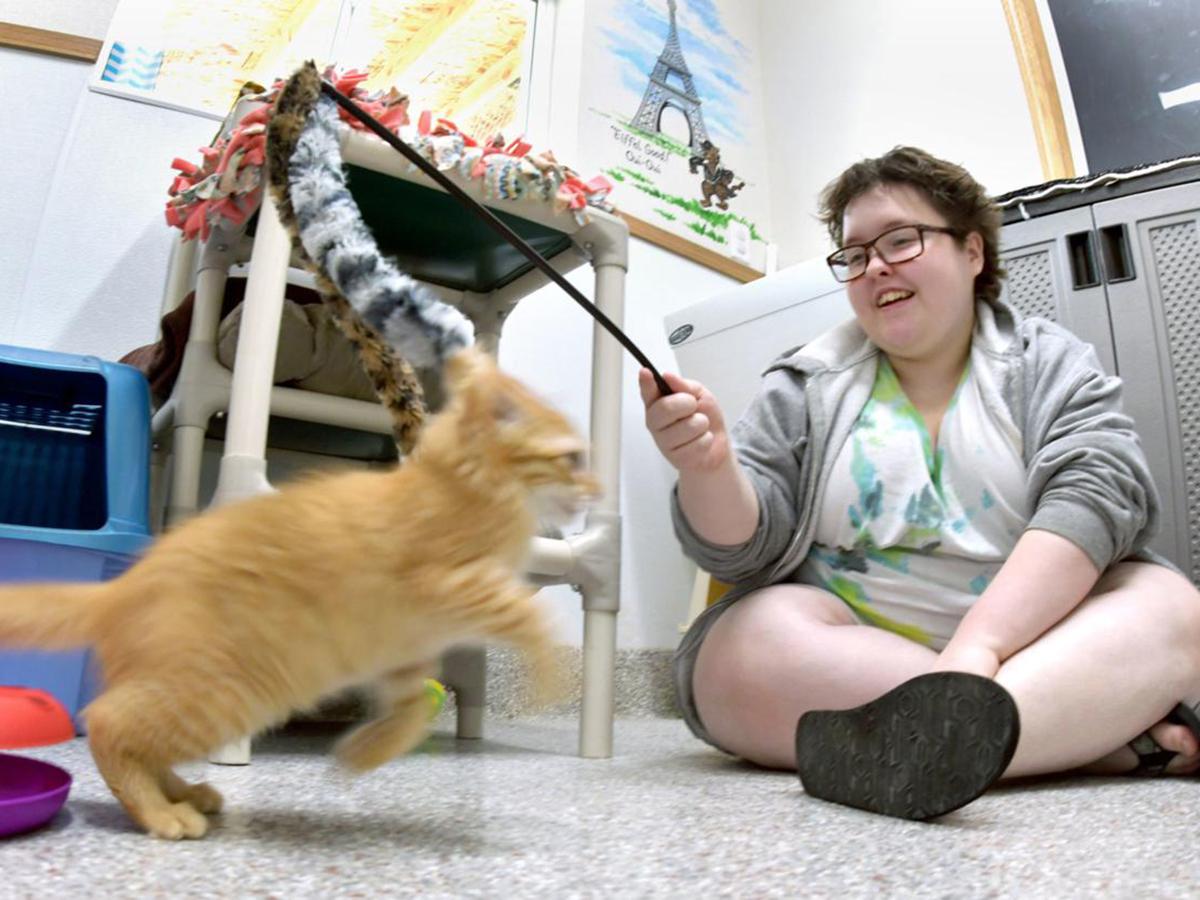 発達障害の女の子は子猫療法で関わり合いを教え、教えられる