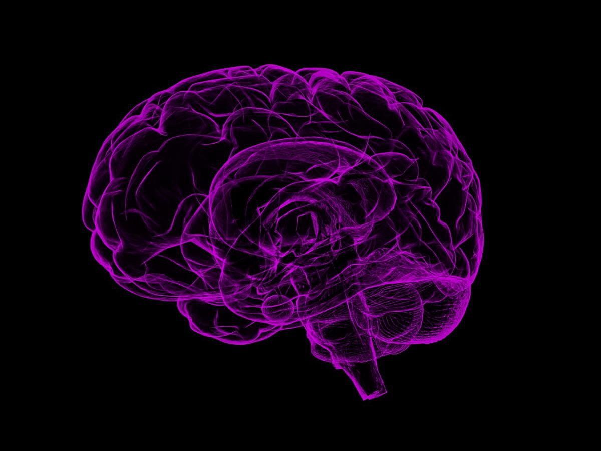 自閉症は極端な男性脳?そもそも男性ホルモンは共感に影響なし b3