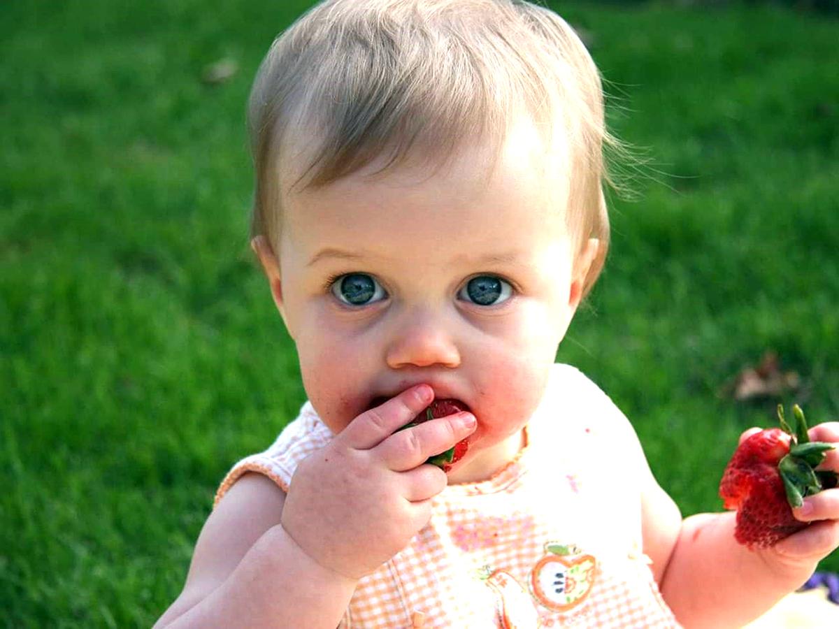 異常な食べ物の好みをもつ自閉症の子は発達障害でない子の15倍