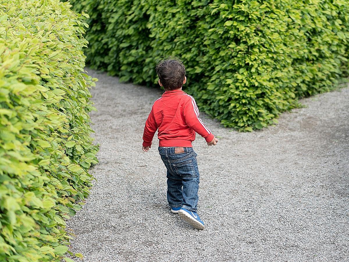 自閉症が治った?少数の研究があるがその理解は正しくない。 k6